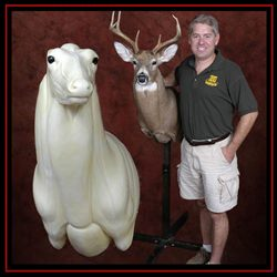 Whitetail Taxidermy kit and finished deer shoulder mount